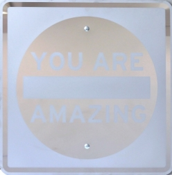 Scott Froschauer: You Are Amazing
