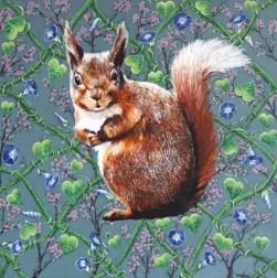 Naomi Jones: Red Squirrel