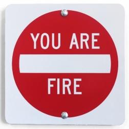 Scott Froschauer: You Are Fire IV