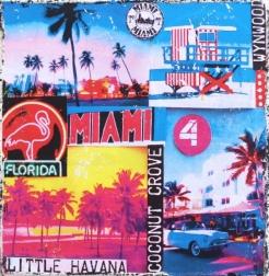 Marion Duschletta: Miami Little Havana