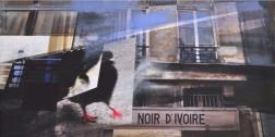 Paul Kirley: NOIR D' IVOIRE