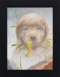 Stuart Dunkel: Seahorse and Puppy