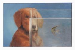 Stuart Dunkel: Golden And Angelfish