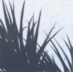 Ilan Leas: High Des Shadows