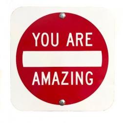 Scott Froschauer: You Are Amazing III