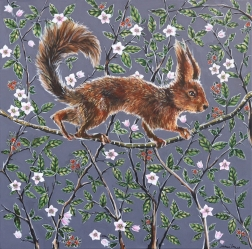Naomi Jones: Feeling Squirrelly