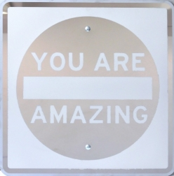 Scott Froschauer: Mirror You Are Amazing II