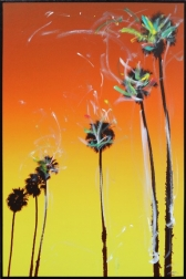 Pete Kasprzak: Santa Barbara Up Palms