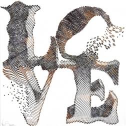 Virginie Schroeder: Love Is An Amazing Journey