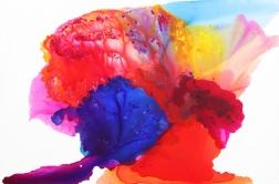 Clara Berta: Dream In Color
