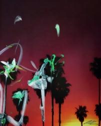 Pete Kasprzak: Halfway Palms
